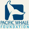 Pacific Whale Foundation - Maui Hawaii