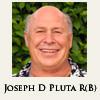 Joseph D Pluta Realty LLC