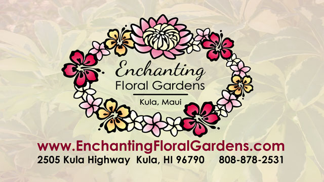 Enchanting Floral Gardens - Kula Maui, Hawaii