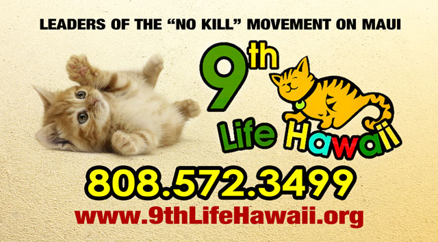 9th Life Hawaii - Maui Cat Rescue and Sanctuary