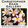 Christopher Egan Gallery