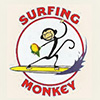 Surfing Monkey Shave Ice